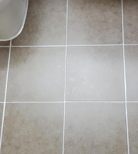 Bathroom Tile Floor Fx Grout Sealer